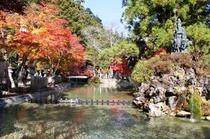 龍泉寺水行場と紅葉。当館より徒歩5分 龍泉寺境内