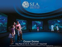 シーアクアリウム:海洋ドーム
