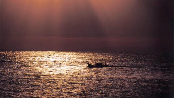 【早得30】ファミリーで楽しむ♪海のレジャー6大特典付★釣りに、スイカ割に、海水浴!お子様も大喜び♪