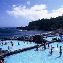 【夏】期間限定OPEN!海洋公園の磯プールはISANAから車で7分!小さなお子様でも気軽に海気分♪