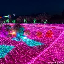 伊豆高原の冬を彩るイルミネーション