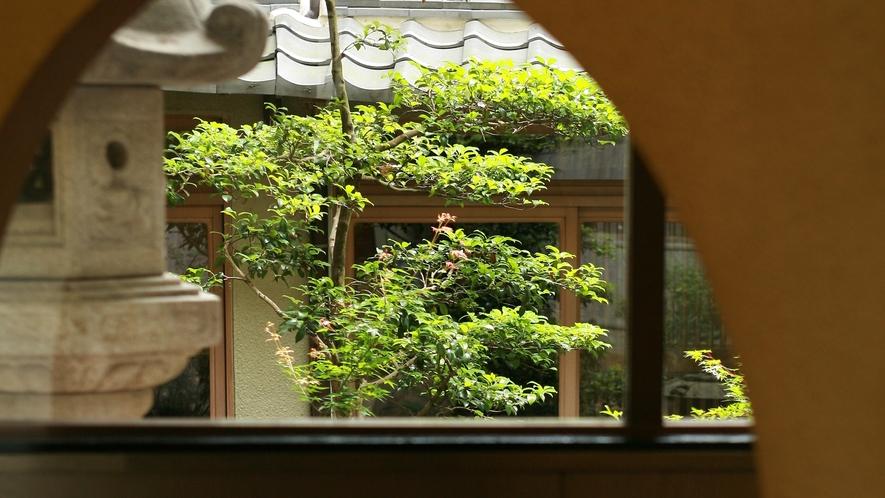 *【館内イメージ】中庭を眺めながら、ゆっくりとお寛ぎください。