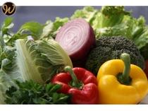 【朝食】 新鮮な野菜でヘルシーに!!