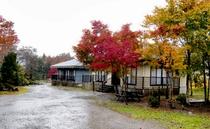 小町の湯やまぼうし秋の風景