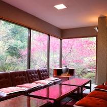 *館内/四季折々の大自然の風景を眺めながら落ち着けるスペース