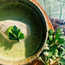 夏◆味だけではなかなか当てられない!見た目にも涼しいキュウリのスープはお子様にも大好評♪