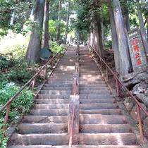 *【周辺情報】阿夫利神社上社に続く登山道への階段。江戸時代より盛んな大山参りの歴史を感じる。