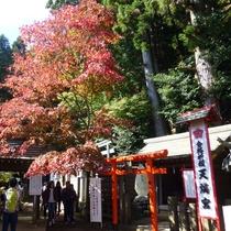 *【阿夫利神社周辺】ここから約90分の山登りがスタート!がんばって登りましょう!!