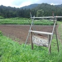 *【シェーヌファーム】お料理は、ファームで採れた野菜も使っています(イメージ)
