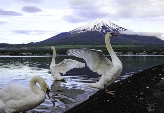 ☆富士山を見るなら山中湖☆ 初めてでもオーナーが絶景ポイントにご案内いたします【1泊朝食付き】