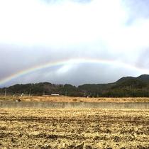*運がよければ虹が見られるかも!?