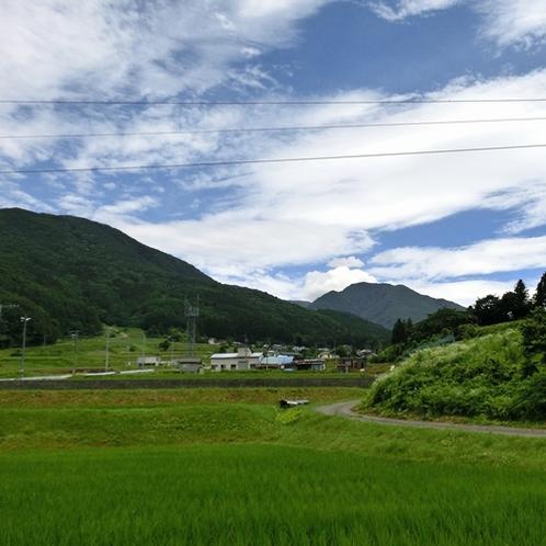 わらび野の裏からの田園風景は、まさに日本の原風景