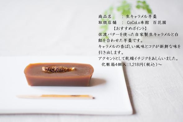 【素泊り】駅ナカ満喫♪CoCoLoお買物券(1泊1名1,000円)つきプラン