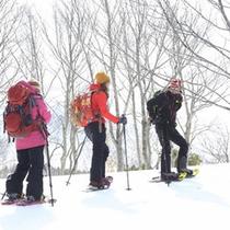 *<スノートレッキング>スノーシューをはいて雪原散歩(イメージ)