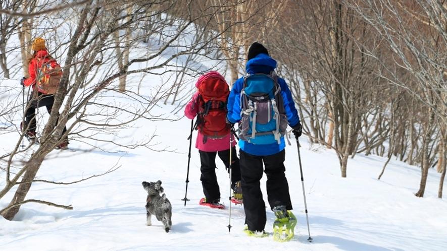 *<スノートレッキング>蔵王の壮大な景観を楽しみながら約3時間の散策(イメージ)