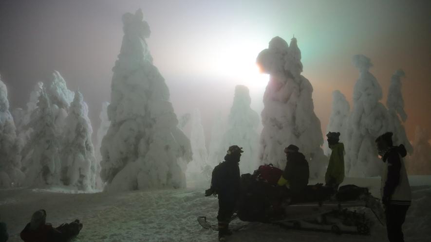 *【樹氷原ライトアップ】蔵王連峰の特別な気象条件が作り出す、自然の芸術品!