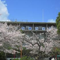 *桜の名所「日岡山公園」の中にある施設です