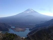 パノラマ台からの富士