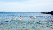 *平塚海岸/夏は海水浴で賑わう平塚海岸。お部屋から徒歩10分で便利!