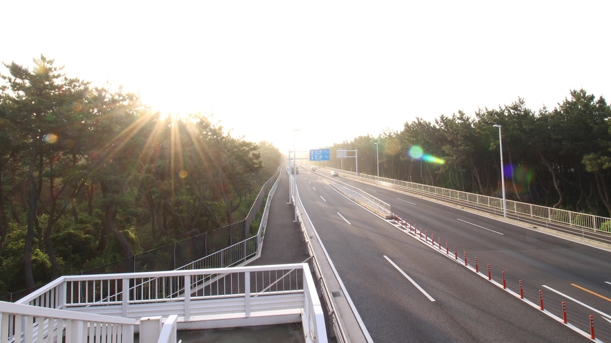 *平塚海岸への遊歩道/歩道橋で国道134号線を渡れば、海はもうすぐそこ。