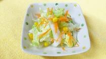 採れたて白菜サラダ