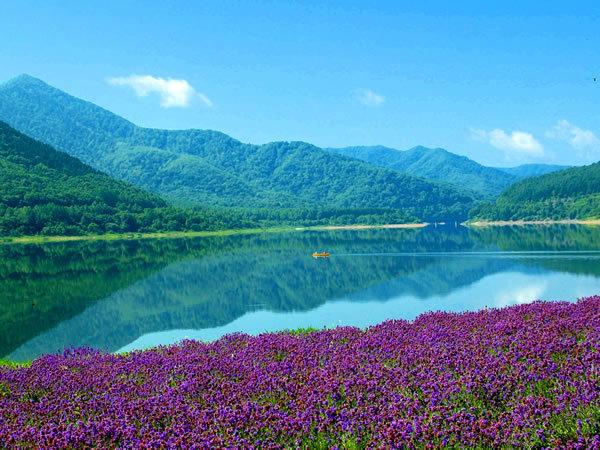 かなやま湖夏