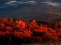 秋のかなやま湖