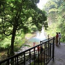 山道を下り、見えてくる伊豆半島最大級の「大滝」