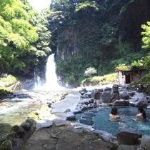 滝を少し離れて見るなら川原湯が一番。温度も入りやすい温度でゆっくり浸かっていられます。