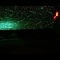 soraファミリーロフト 星空を見ながら過ごす夜の時間 このまま朝までおしゃべりもいいな
