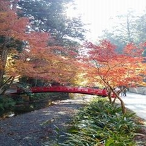 ◆小國神社 境内を流れる宮川