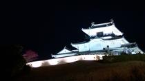 ■掛川城ライトアップ