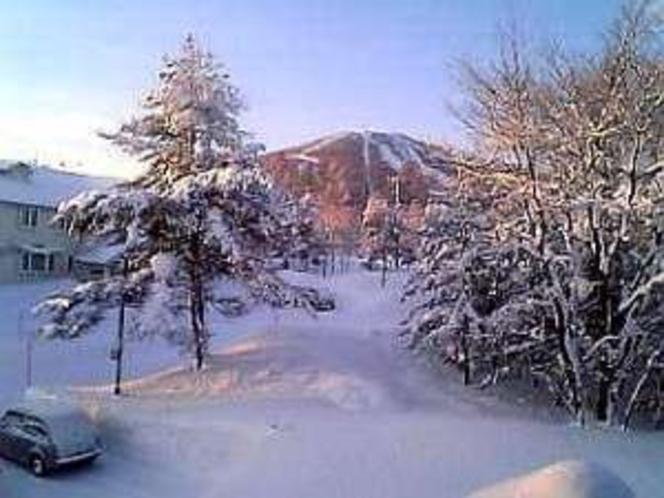 冬の朝、Alice客室からスキー場の前森山を望む