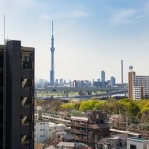 【眺望】東京スカイツリーの見える部屋も!