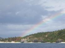 大きく広がる虹の橋