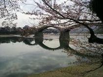 【春の錦帯橋】