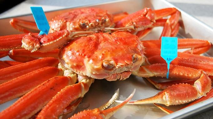 【冬季限定】地蟹だから鮮度は抜群!主人が自信を持ってご提供★豪快&ボリュームが自慢のズワイ蟹♪