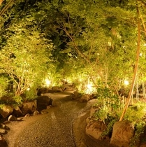 夜の中庭 ☆