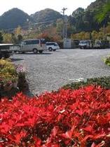 梁山泊の庭からの紅葉♪