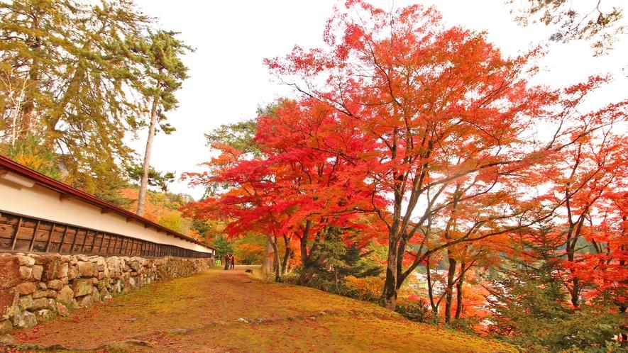 柳津の紅葉は10月下旬から11月中旬にかけて見頃を迎えます