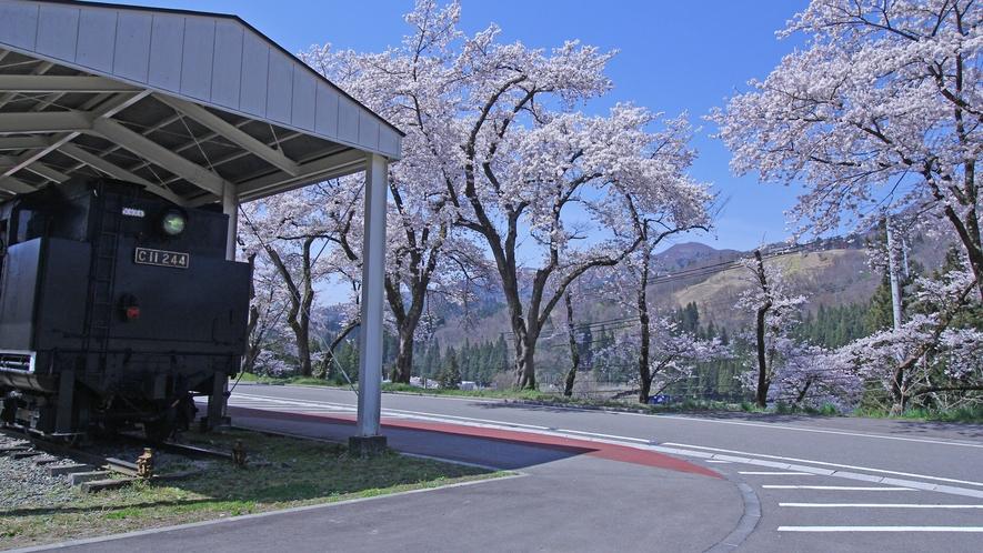 ~春の柳津駅~