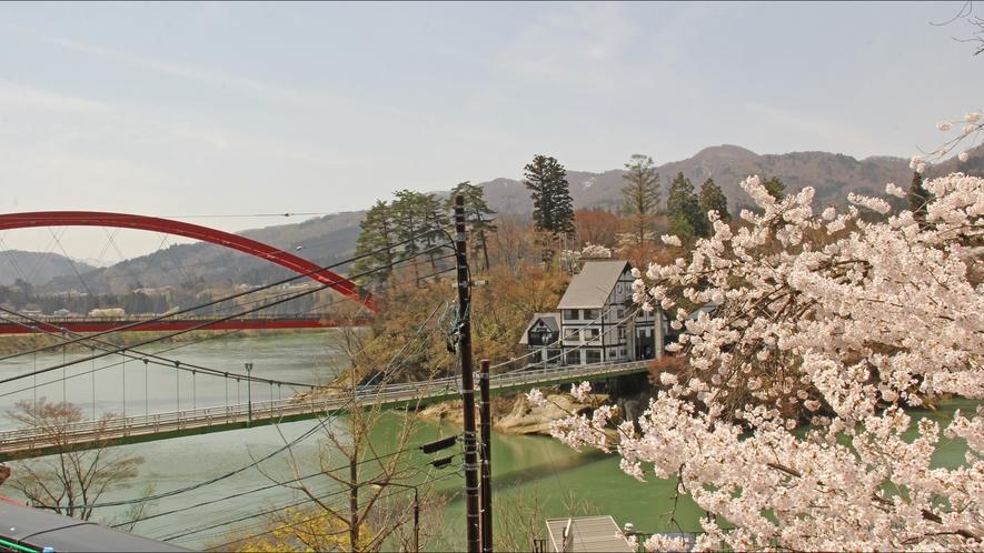 春限定!少し遅めの会津柳津の春をお楽しみください♪