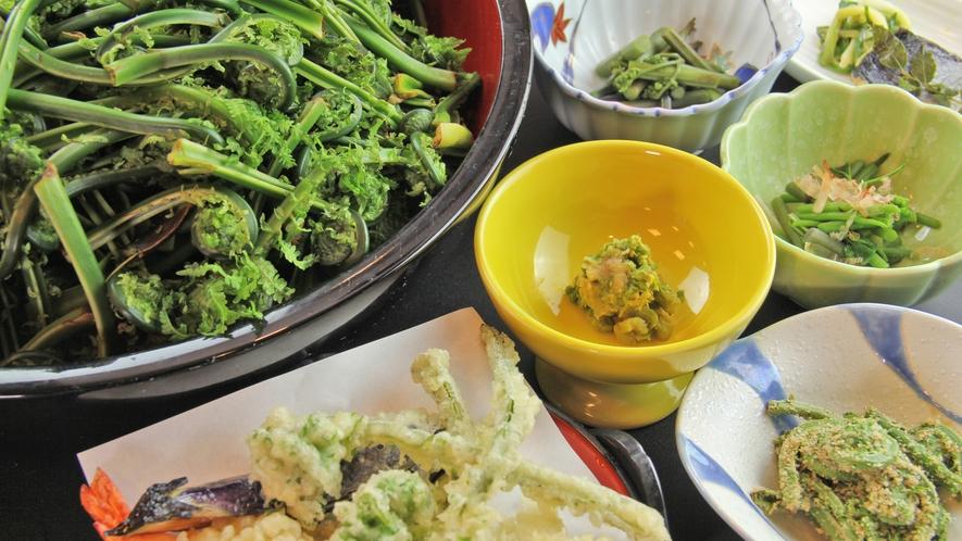 新鮮な山菜は天ぷらや胡麻和えなど様々な調理法でお召し上がりください♪