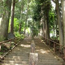 *【周辺情報】阿夫利神社上社に続く登山道への階段。朝の爽やかな空気を感じながら登山へ♪