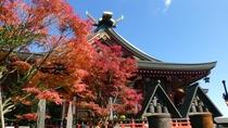 *【阿夫利神社周辺】紅葉シーズンは登山にぴったり。ぜひお出かけ下さい。