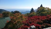 *【阿夫利神社周辺】毎年11月には真っ赤な紅葉をお楽しみ頂けます。