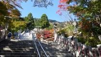 **【阿夫利神社周辺】階段を上ると神社に着きます。振り返れば絶景を楽しめます。