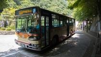 *伊勢原駅と大山ケーブルカー駅を結ぶ路線バス。