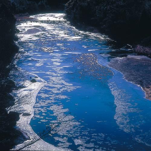 【久慈川♪】2厳冬期 しがの流れる風景