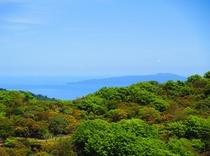 八丁池ハイキングコースからの大島